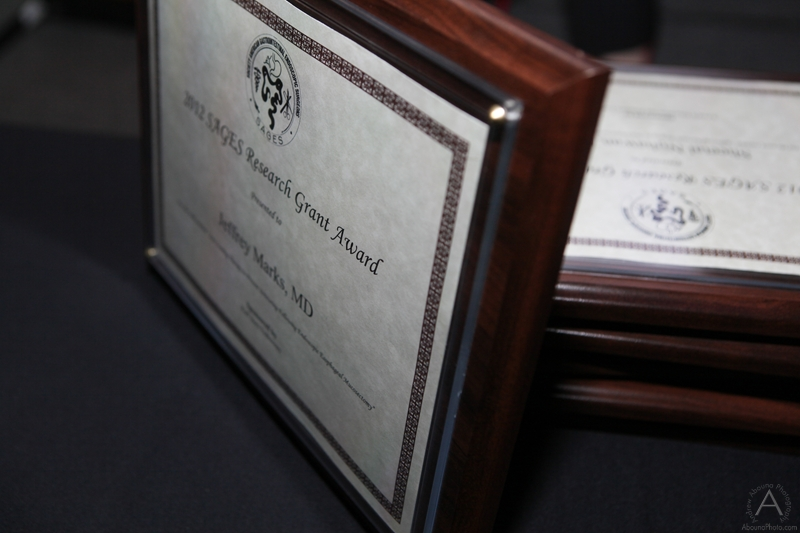 sages_2012_wednesday_awards_luncheon_m-2