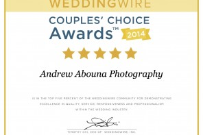Top San Diego Wedding Photographer WeddingWire 2014 Andrew Abouna