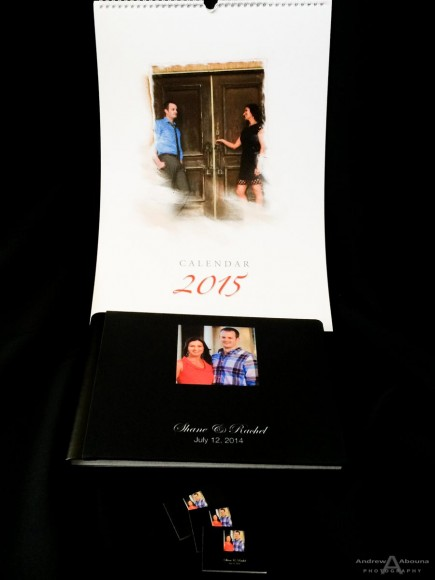 Rachel and Shane Wedding Guest Album by San Diego Wedding Photographer Andrew Abouna