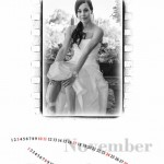 Free Calendar with Wedding Albums