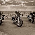 Three Harley Davidson Motorcycles in Arizona Desert