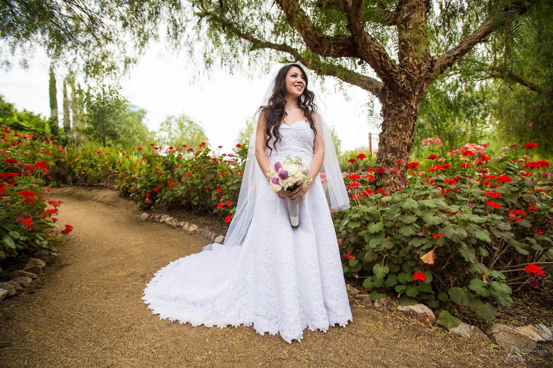 Charisse And Garrett Saint Martha Catholic Church Wedding Photography Murrieta Abbott Manor Reception Temecula California San Go Photographer