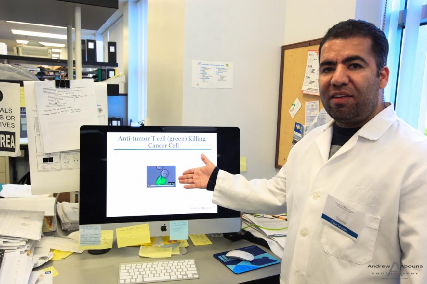 Sanford-Burnham post-doctoral researcher emplaning how anti-tumor-T cell kills cancer cell